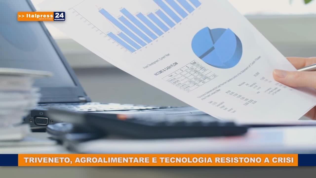 Triveneto, agroalimentare e tecnologia resistono a crisi